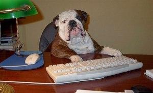 DeskDog